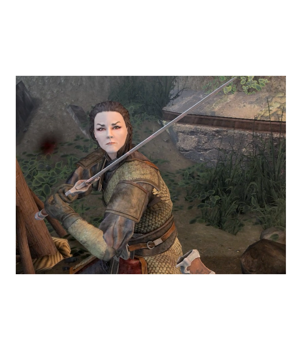 Imperial Crusader - Kerri Kane